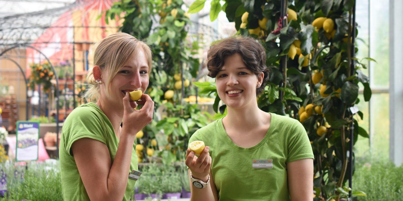 Bei uns finden Sie viele Spezialitäten an Kräutern und Gemüse