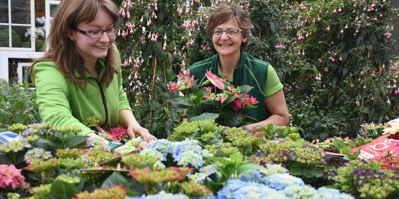 Bunte Blüten für alle Jahreszeiten und Gelegenheiten